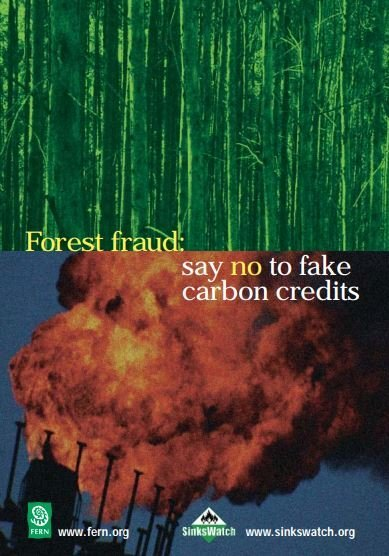 Forest fraud: say no to fake carbon credits