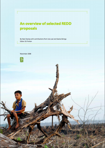 An overview of selected REDD proposals