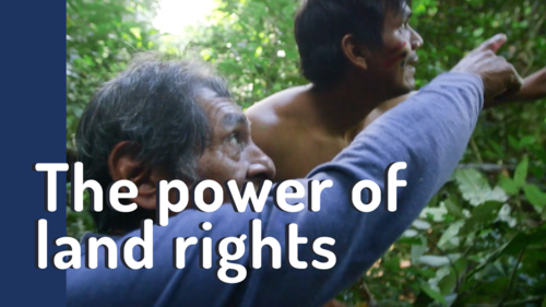 The power of land rights: why Peru's forest communities have lessons for us all