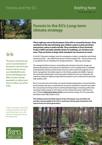 Forests in the EU's Long-term climate strategy