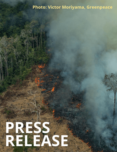 NGOs call for new laws to end the EU's complicity in Amazon fires