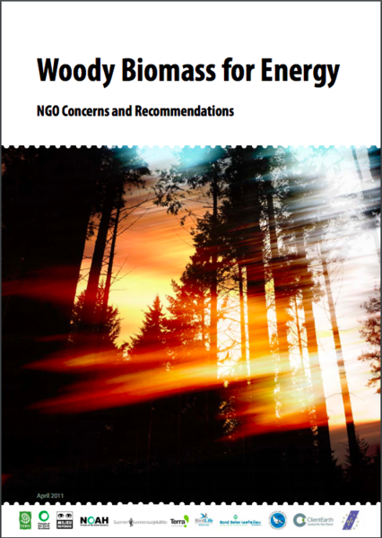 Woody Biomass for Energy: NGO Concerns and Recommendations