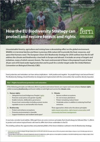 How the EU Biodiversity Strategy can protect and restore forests and rights