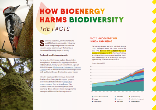 How bioenergy harms biodiversity: the facts