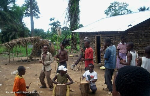 Democratic Republic of the Congo: Indigenous rights law inches forward and CSOs weigh in ahead of COP26
