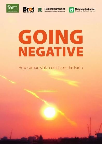 Going Negative - How carbon sinks could cost the Earth