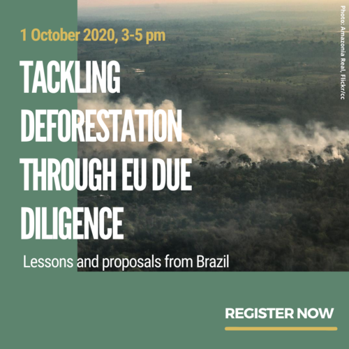 Tackling deforestation through EU due diligence: lessons and proposals from Brazil
