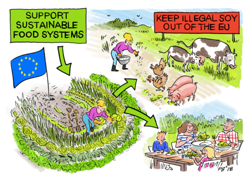 Civil society statement: EU Protein Plan for Europe - Please stand up for forests, people and animals!