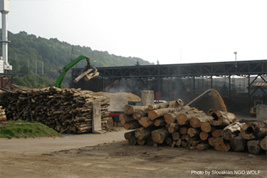 Citizens launch legal bid to stop damage caused by biomass