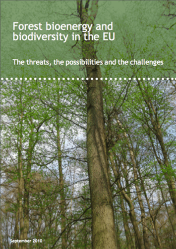 Forest bioenergy and biodiversity in the EU: The threats, the possibilities and the challenges