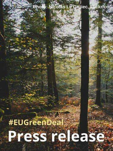 Green Deal could be a springboard for ambitious forest action