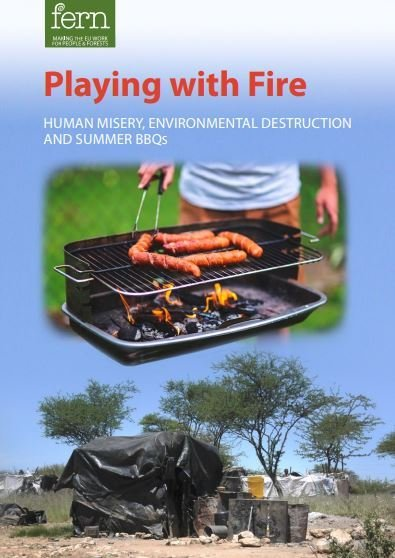 Playing with Fire: Human Misery, Environmental Destruction and Summer BBQs
