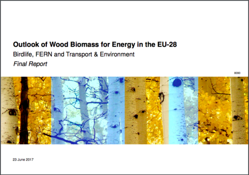 What impact has the Renewable Energy Directive had on EU forests?