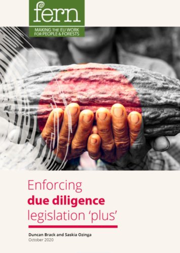 Enforcing due diligence legislation 'plus'