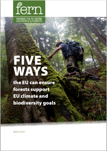 Five ways the EU can ensure forests support EU climate and biodiversity goals