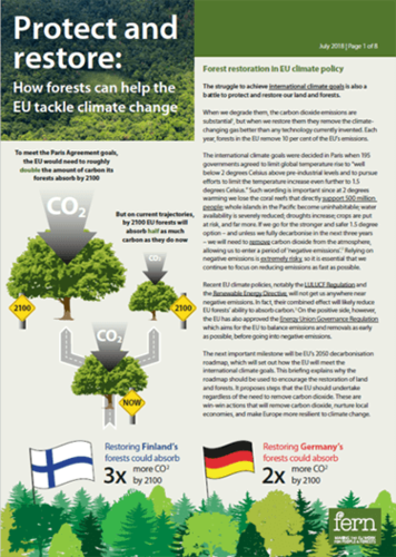 Protect and restore: How forests can help the EU tackle climate change