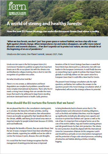 Response to the Forest Strategy consultation - A world of strong and healthy forests