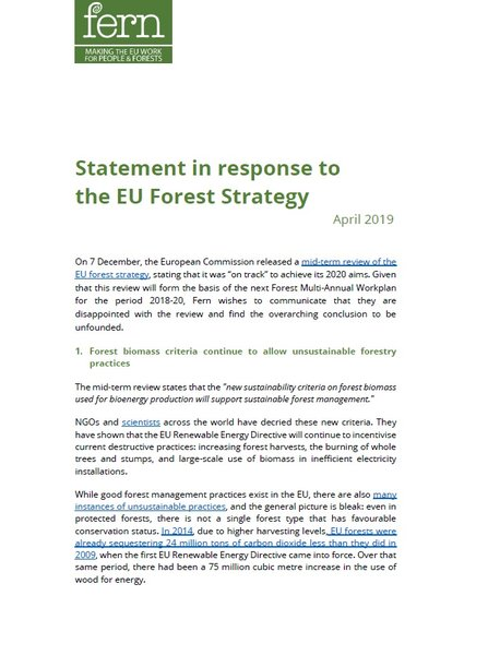 Statement in response to the EU Forest Strategy