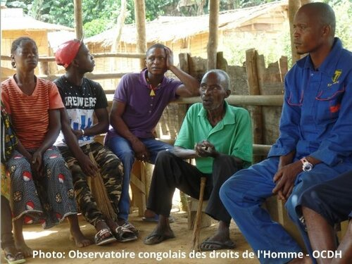 How to improve forest governance in Republic of Congo
