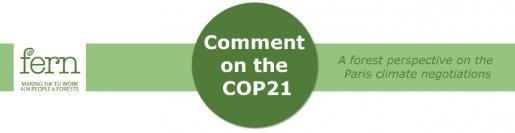 Comment on the COP21 - a forest perspective