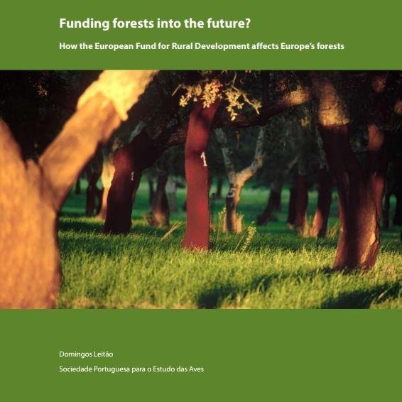 Funding forests into the future. The case of Portugal.