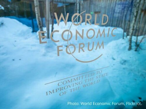 Tree-planting is the talk of Davos: why this dangerous narrative must be challenged