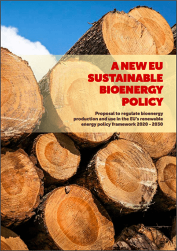 A new sustainable bioenergy policy