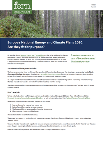 Europe's National Energy and Climate Plans to 2030: Are they fit for purpose?