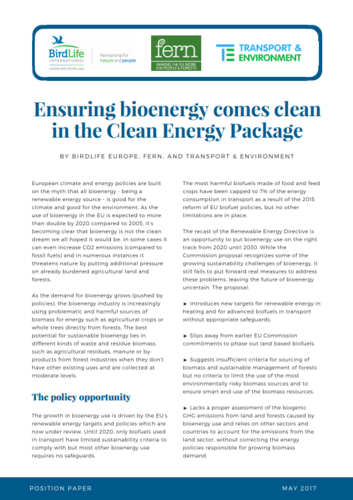 Ensuring bioenergy comes clean in the Clean Energy Package - Joint Statement