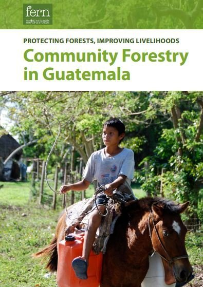 Protecting forests, improving livelihoods – Community forestry in Guatemala