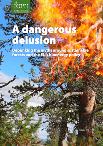 A dangerous delusion: Debunking the myths around sustainable forests and the EU's bioenergy policy