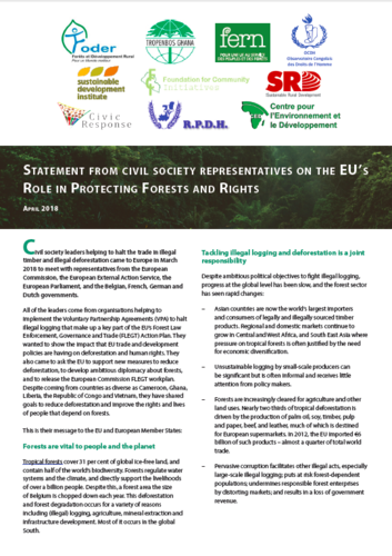 Statement from civil society representatives on the EU's Role in Protecting Forests and Rights