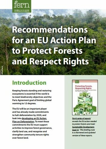 Recommendations for an EU Action Plan to Protect Forests and Respect Rights