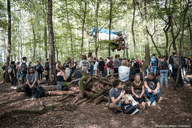 Month of hope for Germany's Hambach forest
