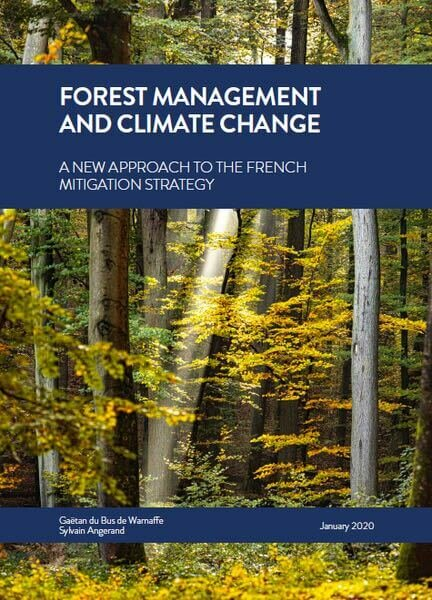 Forest management and climate change: a new approach to the french mitigation strategy