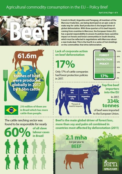 EU consumption of beef and deforestation