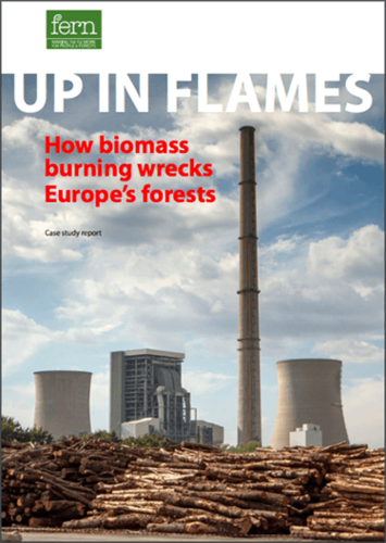 Up In Flames: How biomass burning wrecks Europe's forests
