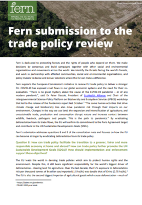 Fern's submission to the trade policy review