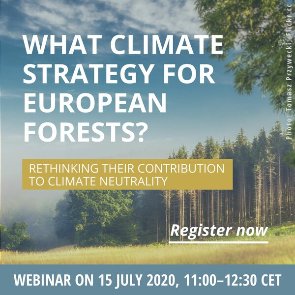 What Climate Strategy for European Forests? Rethinking their contribution to climate neutrality