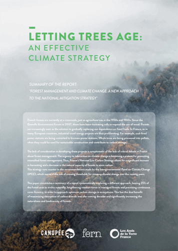Letting trees age: an effective climate strategy