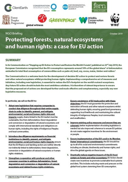 Protecting forests, natural ecosystems and human rights: a case for EU action