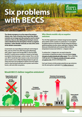 Six problems with BECCS