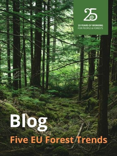 Five EU forest trends to watch out for in 2020