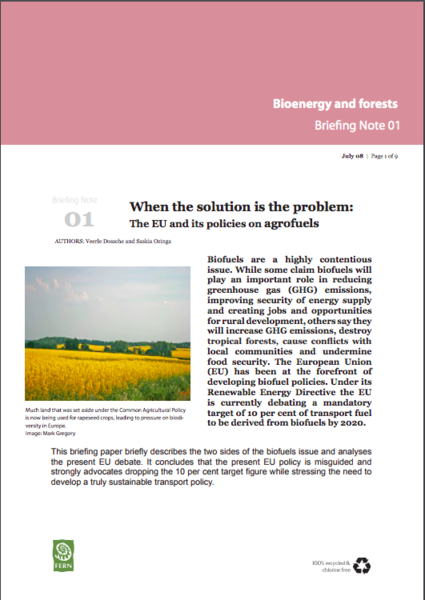 When the solution is the problem: The EU and its policies on agrofuels