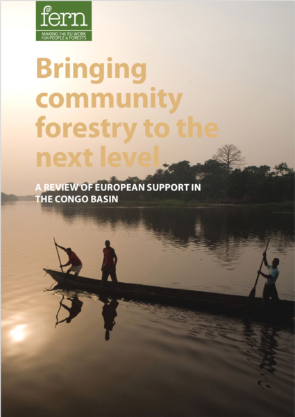 Bringing community forestry to the next level: A review of European support in the Congo Basin