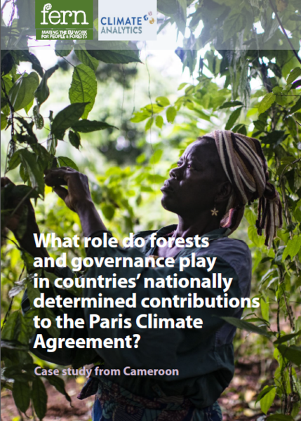 What role do forests and governance play in countries' nationally determined contributions to the Paris Climate Agreement?