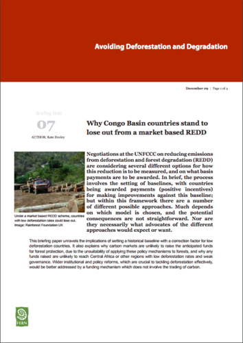 Why Congo Basin countries stand to lose out from a market based REDD