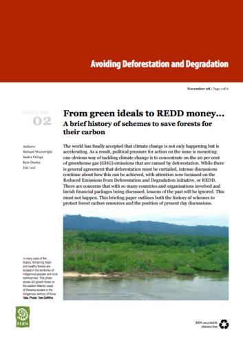 From green ideals to REDD money
