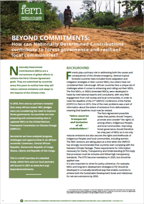 Beyond commitments: How can Nationally Determined Contributions contribute to forest governance and resilient local communities?