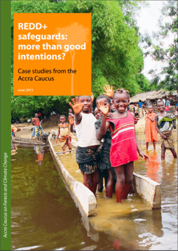 REDD+ safeguards: more than good intentions? Case studies from the Accra Caucus